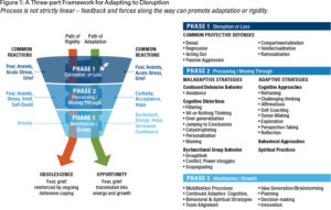 framework-for-adaptation-diagram